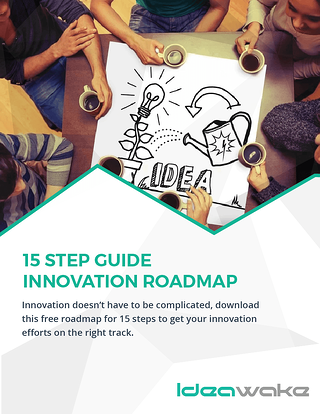 15 Step Guide Innovation Roadmap-01-small.png